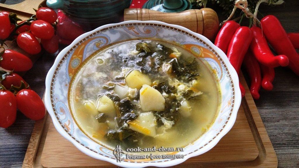 суп из щавеля с яйцом