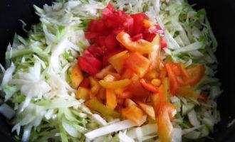 тушеная капуста с луком и помидорами рецепт с фото